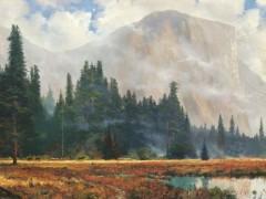 Yosemite Meadow